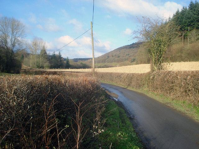 Lane to Lower Lye