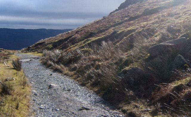 Path towards the Walna Scar track