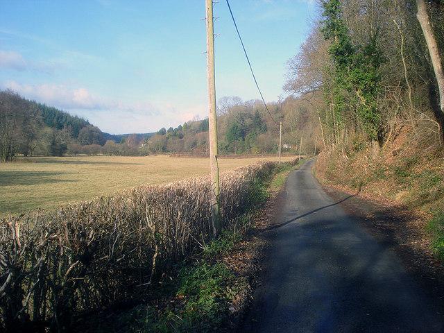 Lane to Ballsgate Common