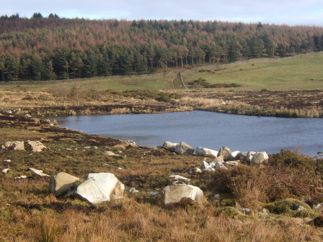 Tarn near High Lowscales
