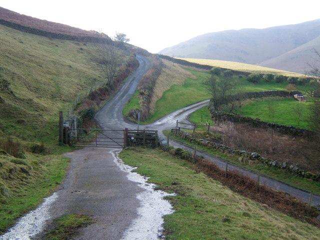Lane and tracks