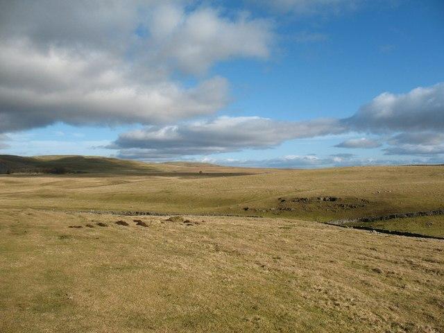 Yorkshire prairie