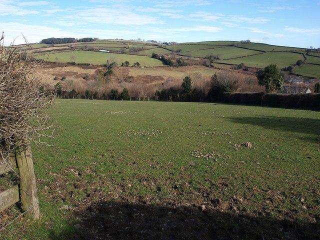 Field near Hawson Cross