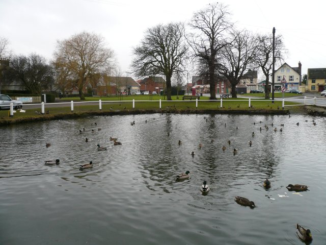 Duck Pond & Village Green