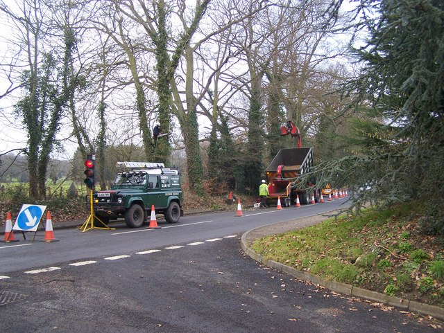 Tree cutting on Trottiscliffe Road