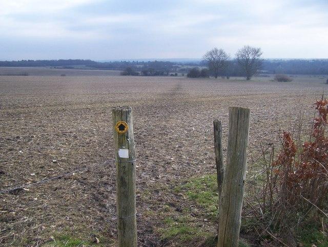 Footpath crosses field to Trottiscliffe