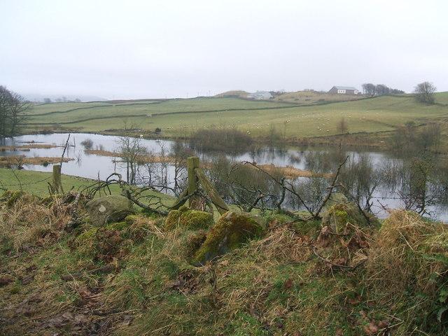 Flood Ponds