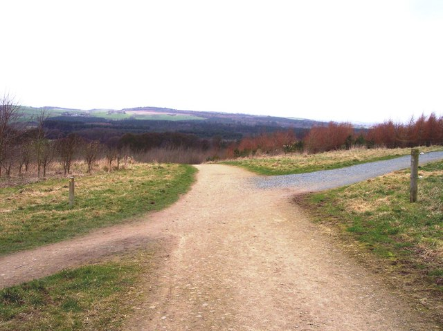 Pathway crossing near Pale Heights