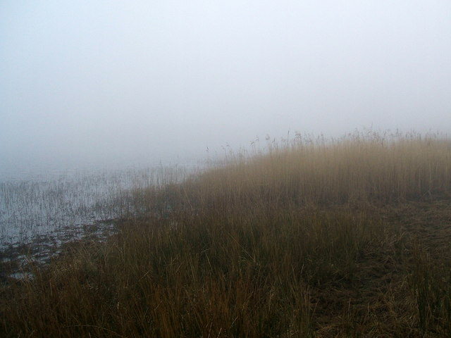Mist and reeds on Skeggles Water
