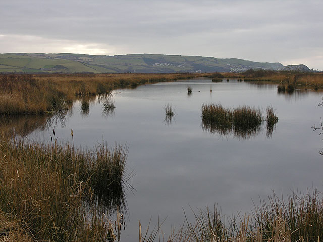 Pond on the Cors Fochno