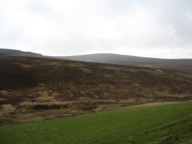 Hillside scenery in the Borders