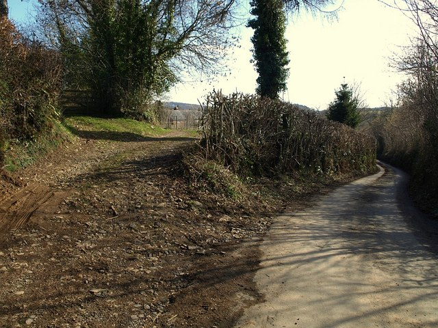 Lane to Littlecombe
