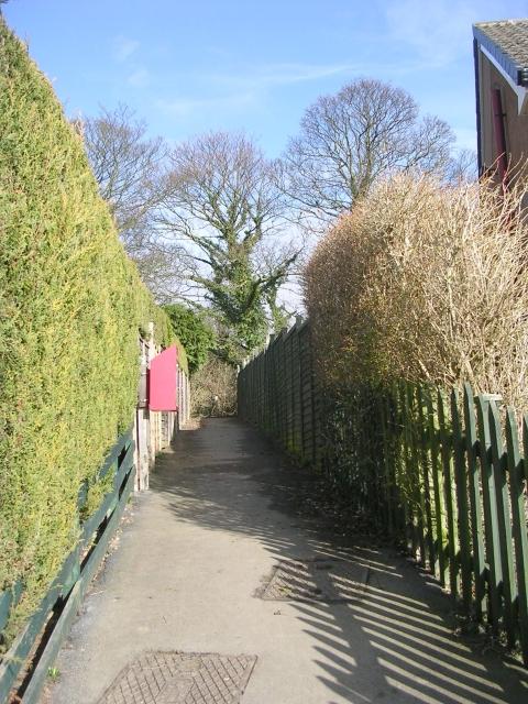 Footpath - St Davids Road