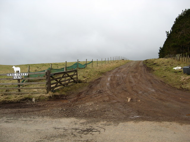 The track to Dere Street Farm