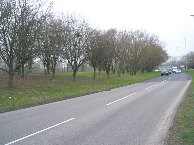Approaching cars in Western Road