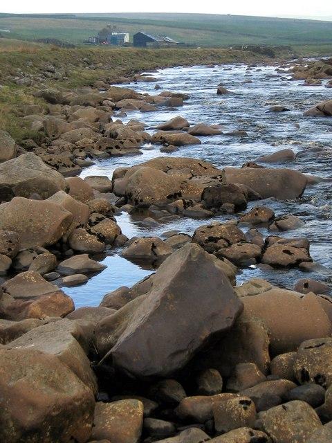 The River Tees near Widdy Bank Farm