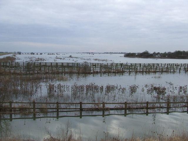 Welney Marshes