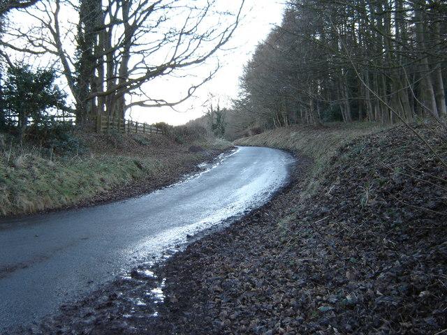 Waite  Lane  uphill