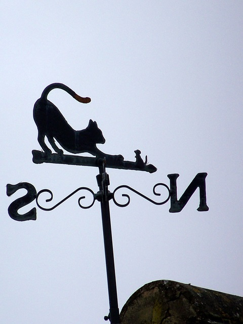 Weather vane, Stratford sub Castle