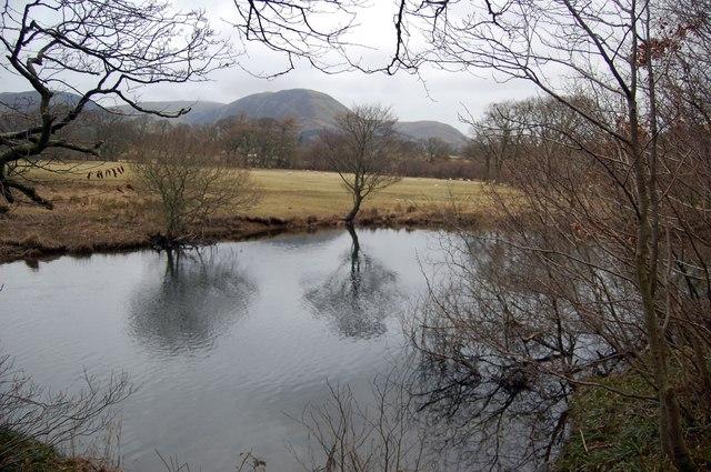 The River Cocker