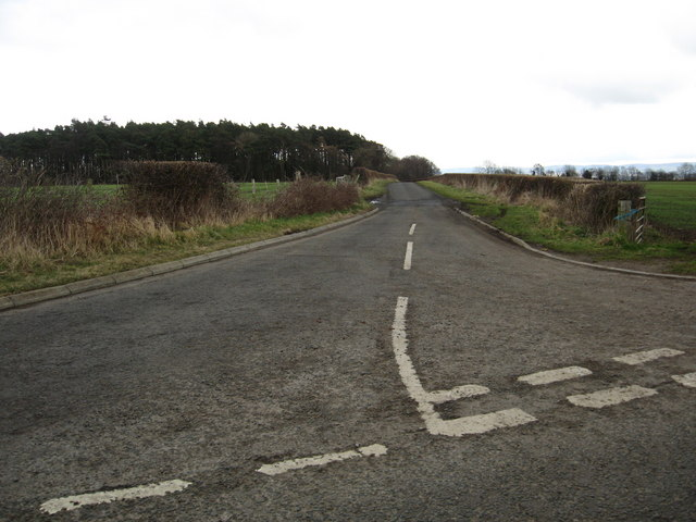The road leading to Hodges