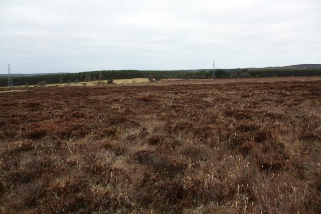Boggy Moorland on Cairn Eney