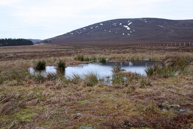 Kettle Hole Lochan near Bogeney
