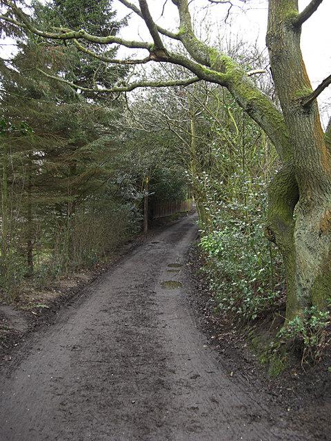 Bridleway to Windy Bottom Farm
