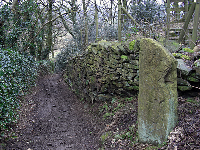 Bridleway at The Banks