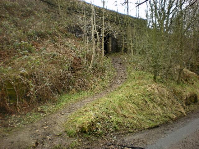 Footpath under the railway near Dunge Booth Lock