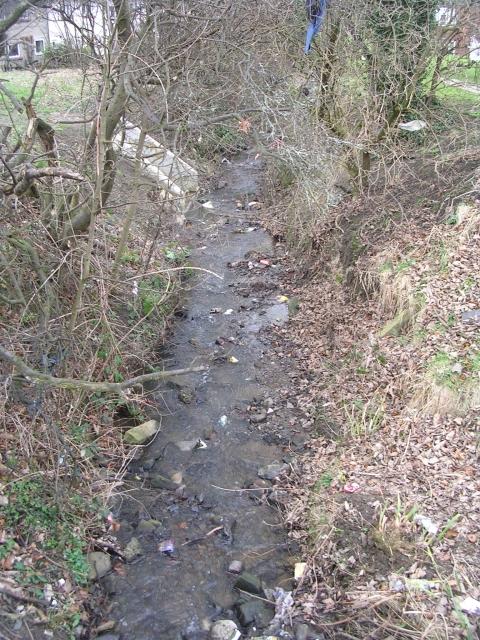 Beck - Weston Ridge
