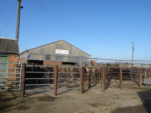 Thrapston Livestock Market