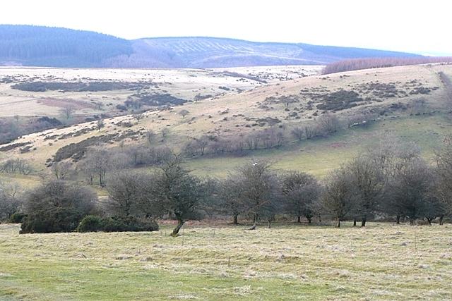 Above Bwlch-gwyn