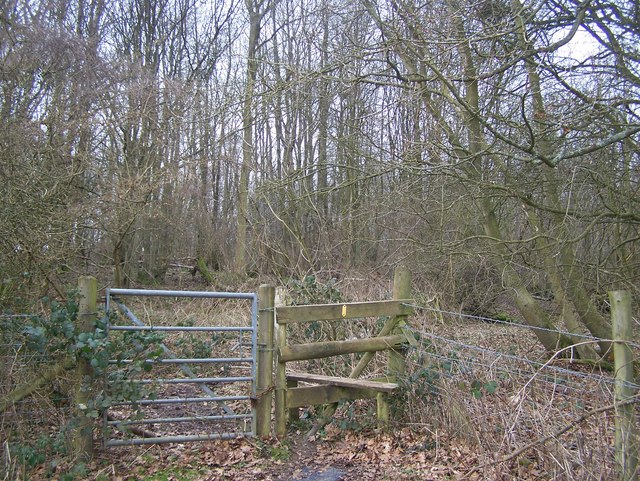 Stile beside gate into Wessells Wood