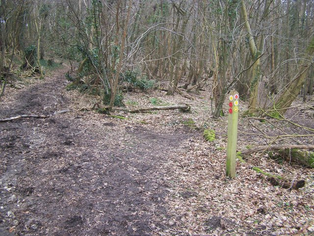 Footpath junction near Stansted Lodge Farm