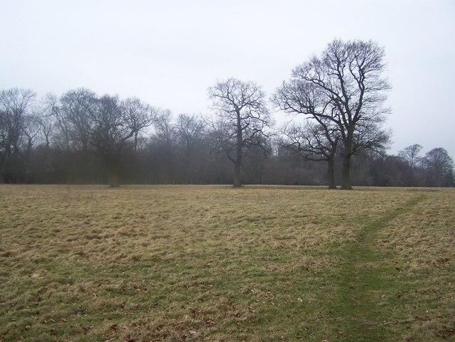 Footpath past Long Wood