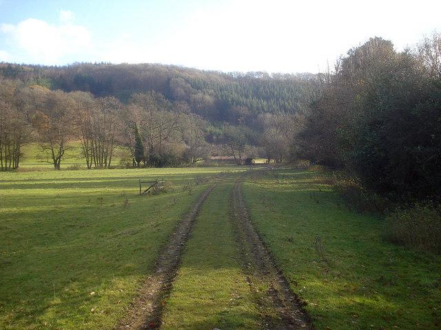 Track near Yatton Court