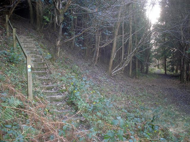 Footpath junction in Pokeshouse Wood