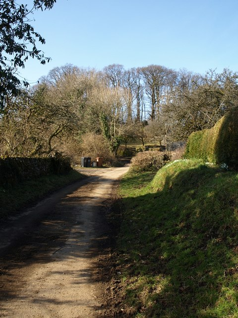 Lane at Michelcombe