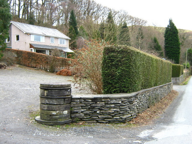 Neat hedges at Llwyngwern