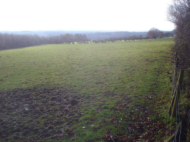 Grazing land at Lucton Common - 2