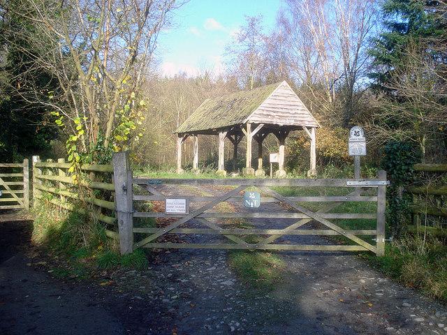 Entrance to School Wood