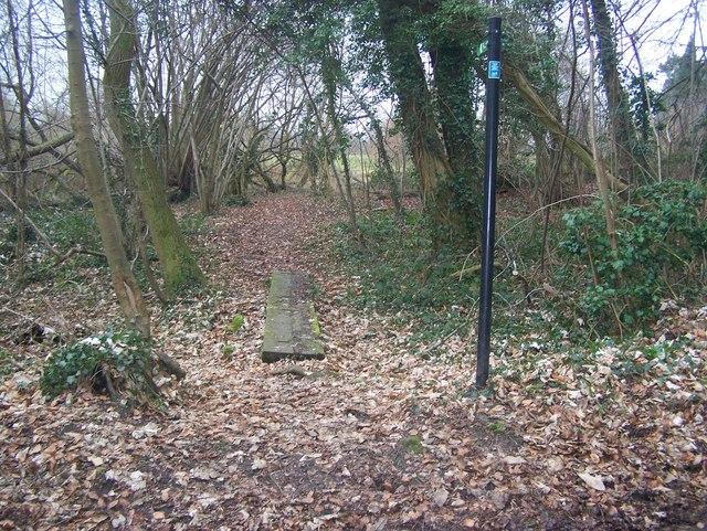 Footbridge in small woods near St Vincents Lane