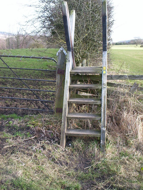 Tall ladder stile near Wiserley