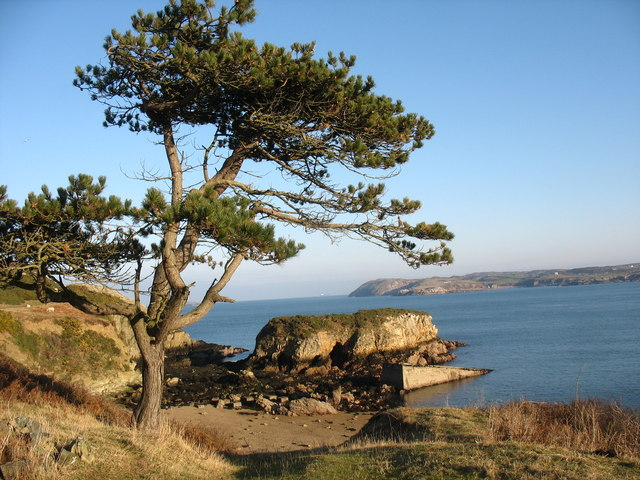 Porth Ogof cove on Wylfa Head