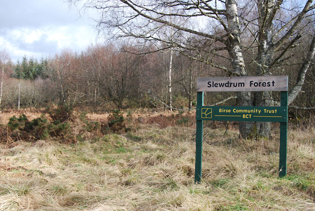 Slewdrum Forest