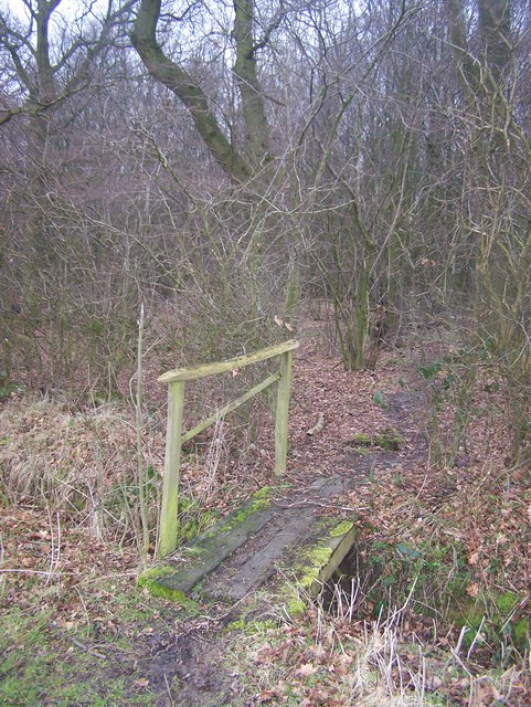Footbridge into Hall Wood