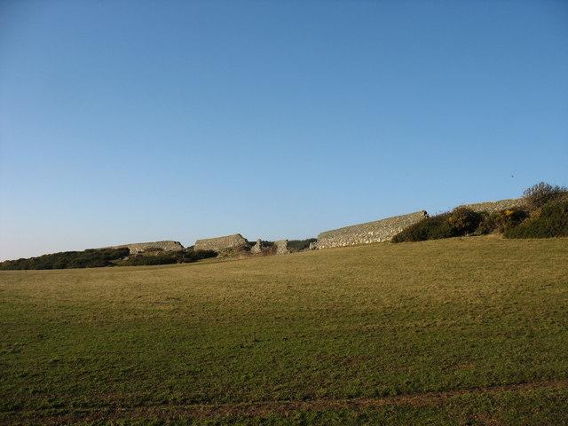 Old parkland wall on Wylfa Head