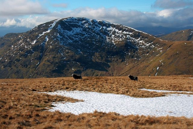 Red Screes From Cauldale Moor