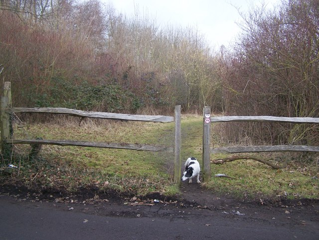 Entrance to Saxten's Wood and Cages Wood